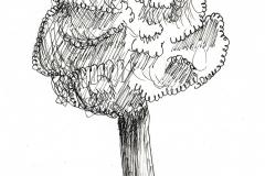 dessin-pied-31